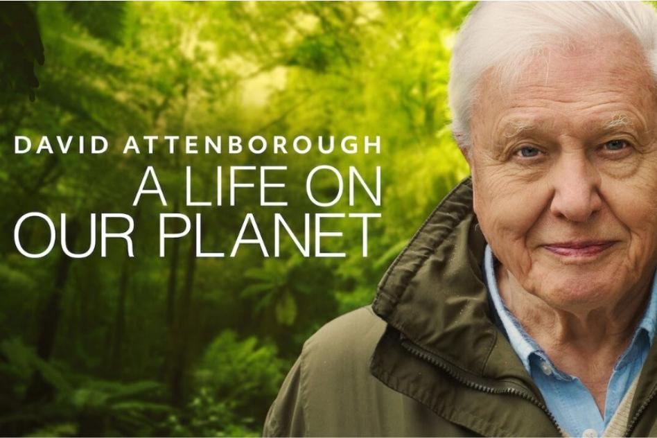 El aria de Attenborough